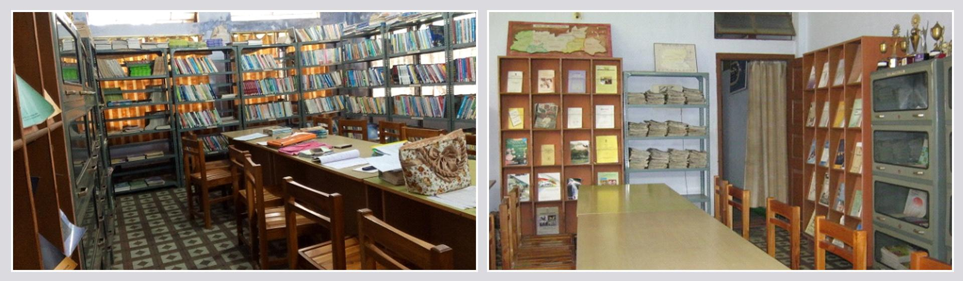 Library and Book Shelf Banner Image
